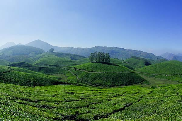 The cheap and best honeymoon destination Munnar in India with hill station